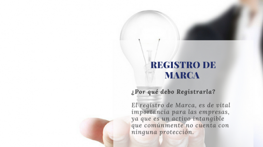 REGISTRO DE MARCA Y SU OBLIGACIÓN DE DECLARAR SU USO REAL Y EFECTIVO.